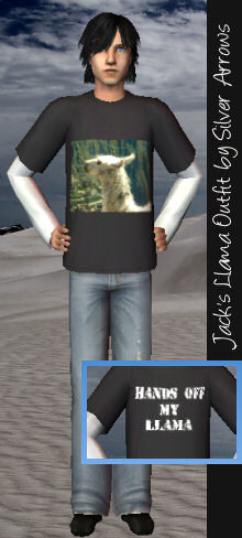 Jack's Llama Outfit