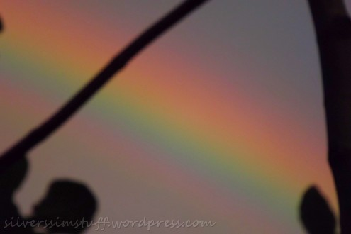 rainbowbright