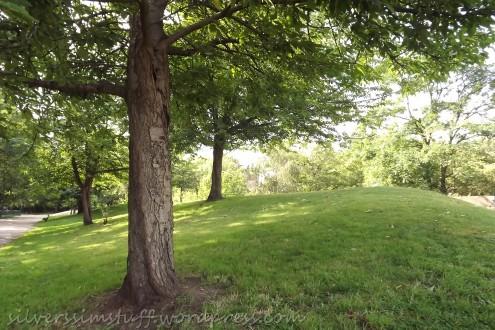 treespark